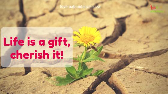 life is a gift, cherish it