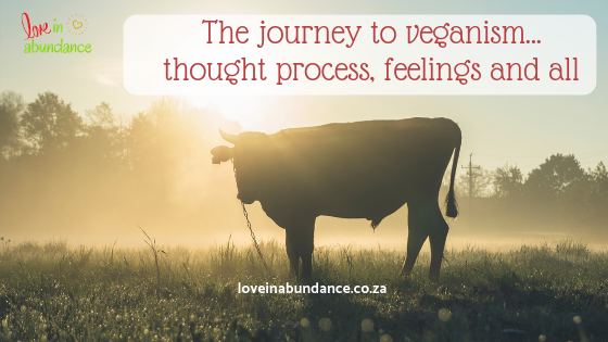 The journey to veganism… thought process, feelings and all
